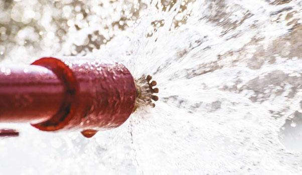 Sprinklers e o senso comum 2